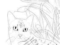 Egyptian Mau drawing closeup