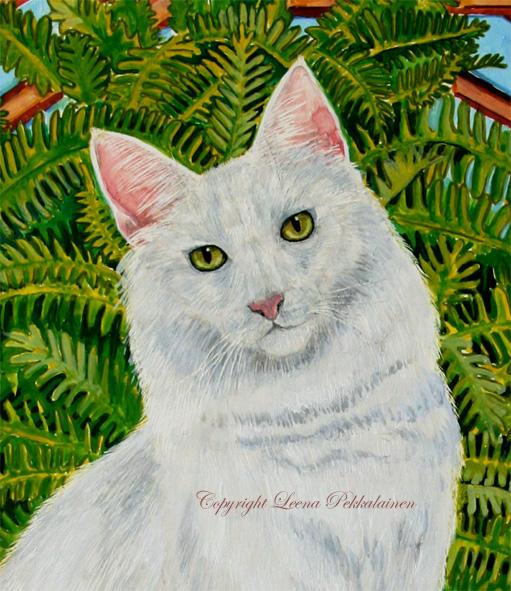 White Turkish Angora portrait
