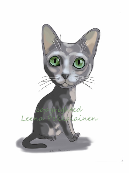 cartoon cat, korat cat breed