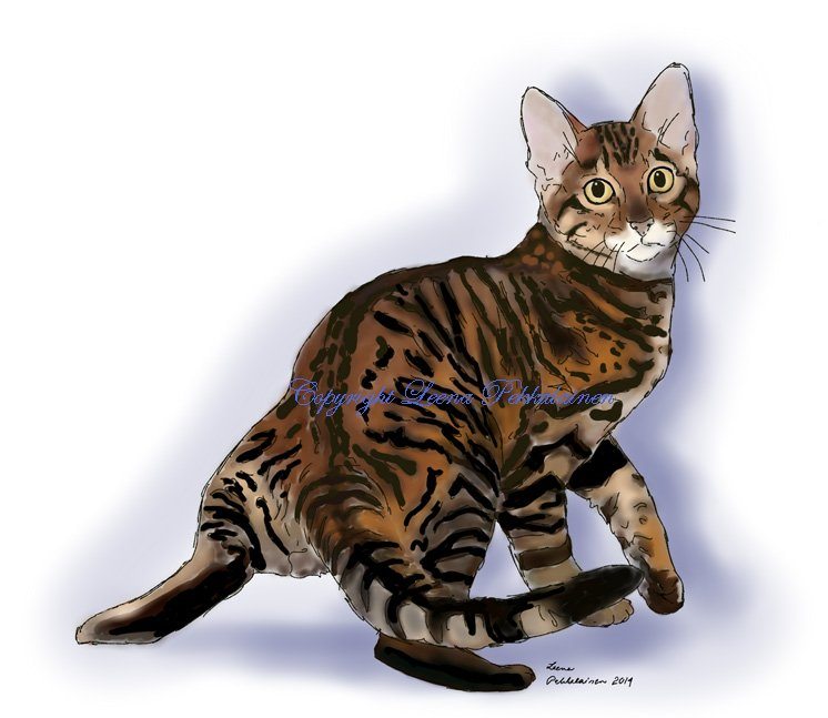 painting of a Toyger turning towards the viewer.