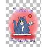 pyludactyl cats