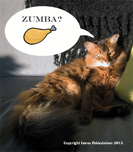 What the heck is zumba? Is it something to eat?